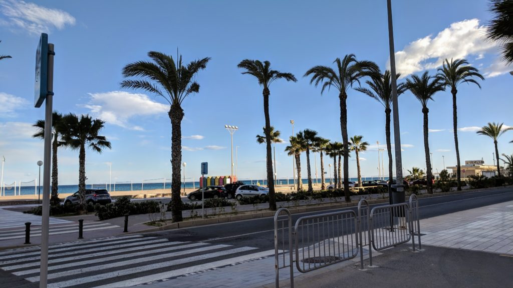 Palm trees and promenade