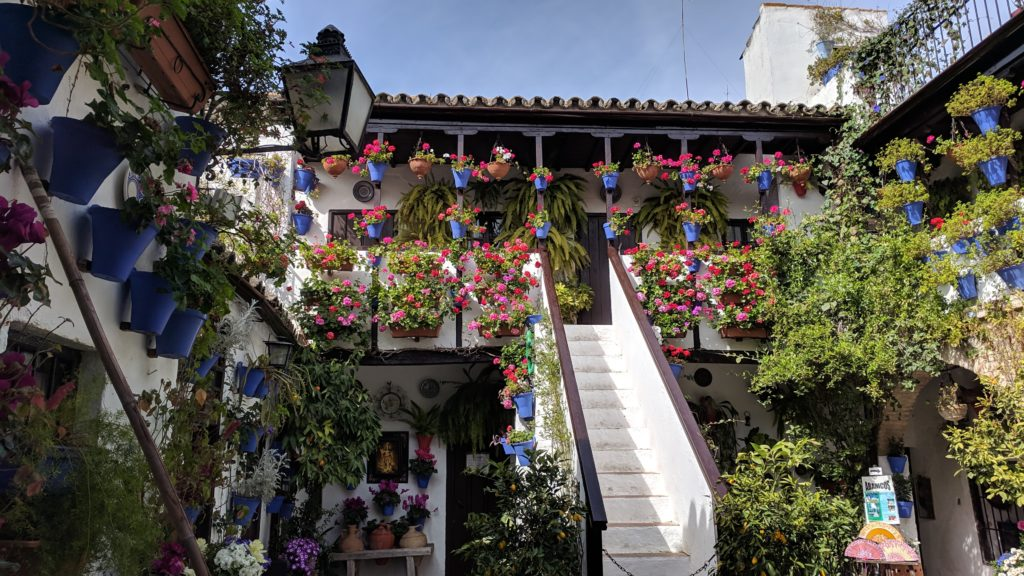 One of the famous Cordoba patios