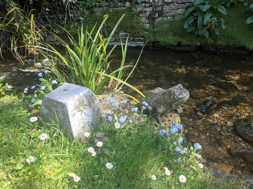 Stream with flowers and a stone frog